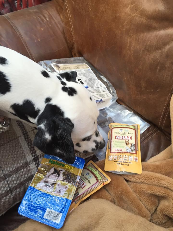 Dog food 12
