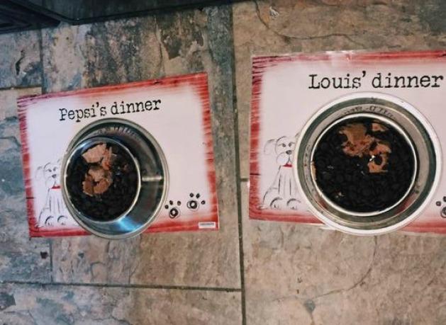 Louis and pepsi food x